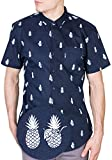 Visive Mens Hawaiian Shirt Short Sleeve Button Down Shirts (Pineapple,4X-Large)