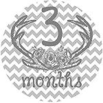 12-Monthly-Baby-Stickers-Deer-Antlers-Flowers-Baby-Girl-Baby-Belly-Stickers-Baby-Month-Stickers-First-Year-Stickers-Months-1-12-Pink-Grey-Gray-Chevron-Deer-Antlers-Girl