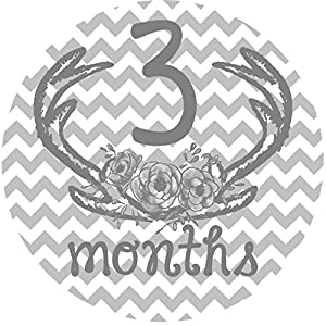 12 Monthly Baby Stickers, Deer Antlers, Flowers, Baby Girl, Baby Belly Stickers, Baby Month Stickers, First Year Stickers Months 1-12, Pink, Grey, Gray, Chevron, Deer Antlers, Girl 6