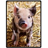 Cute piglett pattern,lovely litte pig art Fleece Blankets Throws 58 x 80 inches(Large)