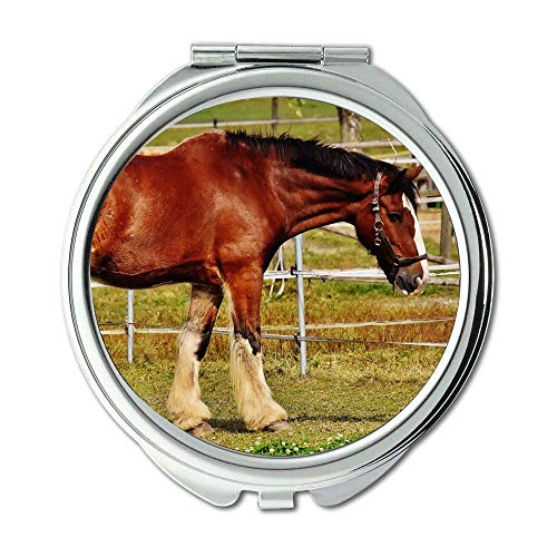 Mirror,Travel Mirror,animal bridle cavalry,pocket mirror,portable mirror ()