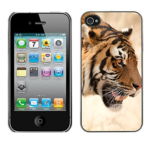 Hülle Case Schutzhülle Cover Premium Case // V00002658 Tiger // Apple iPhone 4 4S 4G