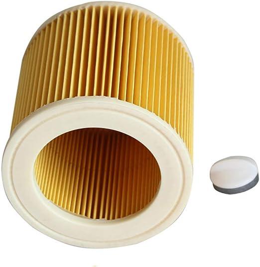 Compra Liqiqi Home Elemento de filtros HEPA para aspiradoras KARCHER Serie A/WD Accesorios con Loc en Amazon.es