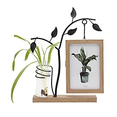 Afuly Unique Picture Frame 4x6 Wooden Desk Photo Frames with Metal Tree and Vase Double Sides Display Mom Day Unique Gift - MULTIFUNCTIONAL DESIGN: As an elegant craft to highlight & decorate office & home. Frame for showing memorial photos. Bud vase for growing hydroponic plants. EXCELLENT QUALITY: 1.5cm thick sturdy MDF frame and base in wood grain finish. 2mm thick real glass front preserves photos. Metal holder with black paint resists rust. AFTER-SALES SERVICE: Immediate after-sales and replacement service will be provided if the item is shattered or damaged. - picture-frames, bedroom-decor, bedroom - 51GbeXpuKHL. SS400  -