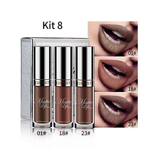 Franterd 3Pcs Sexy Ultra Matte Lipstick - Long Lasting Waterproof - Liquid Lip Gloss Lip Liner - Cosmetics Professional Makeup Tools Set (H) ()