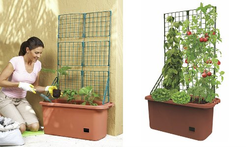 Mobile Garden Vegetable Patch Planter Pot & Trellis Climbing Vine Patio Tomato Veggies Herbs