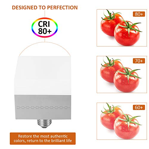 No Flicker Eye-Caring 20W LED Bulbs,Square LED Garage Light Bulbs,Screw in Ceiling Light Fixture,2000LM 6500K with E26 E27 Base for Photo Video Studio, softbox, Basement,Home Indoor Outdoor Lighting