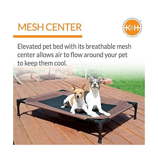 51GbrXlQpeS KH 771615 Original Pet Cot - erhöhtes Haustierbett für Hunde und Katzen - Mittel, M