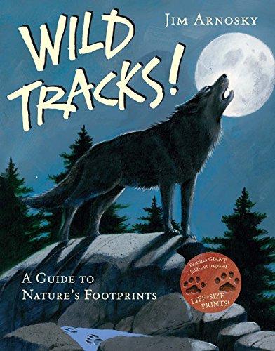 Wild Animal Footprints - 1