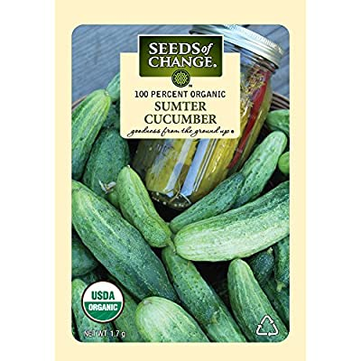 Seeds of Change Certified Organic Cucumber, Sumter - 1.7 grams, 55 Seeds Pack