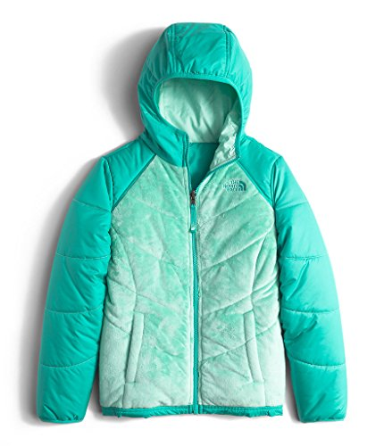The North Face GIRLS' REVERSIBLE PERSEUS JACKET color: ICE GREEN size: LG (14-16 Big Kids) by The North Face