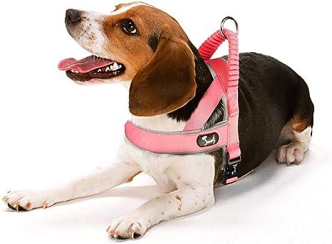 Louvra Arnés para Perros Reflectante Suave Arnés de Cachorro ...