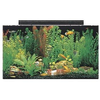 "SeaClear 50 gal Acrylic Aquarium Combo Set, 36 by 15 by 20"", Black"