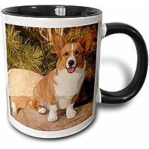3dRose 3dRose Purebred Cardigan Welsh Corgi Dog on rock - NA02 PWO0023 - PiperAnne Worcester - Two Tone Black Mug, 11oz (mug_140281_4), , Black/White