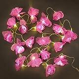 Catena di 20 LED luci festivi nella forma di fiori di rosa - operata a batteria - colore viola