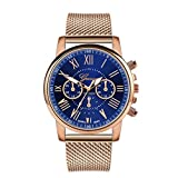 Womens Watch,WoCoo Analog Quartz Roman Numerals Dial Wrist Watch with Stainless Steel Mesh Band Watches Gifts for Her(Blue)