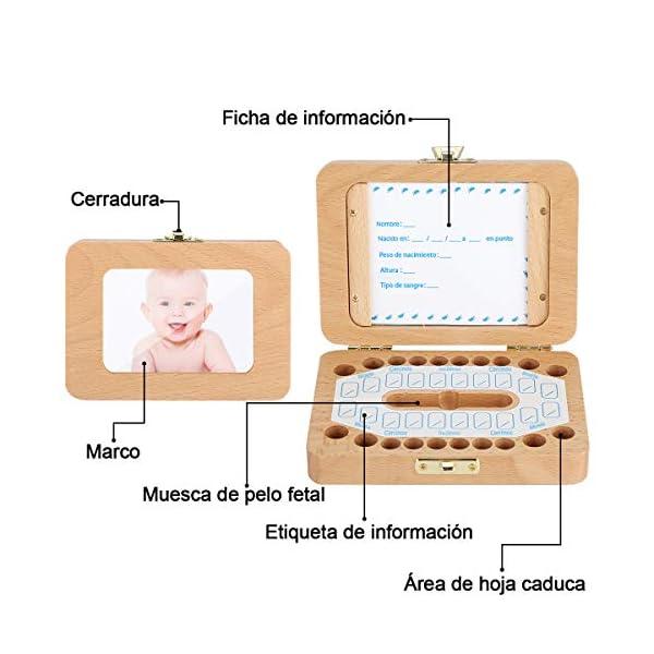 Luchild caja dientes leche ESPAÑOL, Caja para guardar dientes para niños y niñas, Regalo para niños en madera de… 4