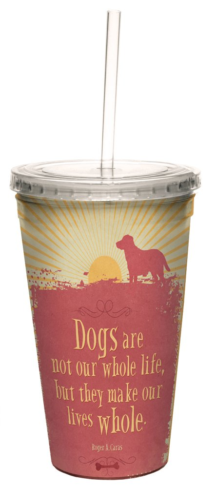 Tree-Free Greetings 98177 Angi and Silas Life Whole Double-Walled Cool Cup with Reusable Straw 16-Ounce