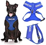 Service Dog Blue Color Coded Waterproof Padded Adjustable Non Pull Front and Back Ring Alert Warning Small or Medium Vest Dog Harness Prevents Accidents By Warning Others of Your Dog in Advance (Medium Vest Harness)