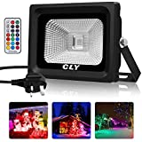CLY RGB Flood Light, 10W Colour Changing RGB Floodlight with Remote Control, 4 Modes 16 Colours Spotlights IP66 Waterproof Pond Lights for Garden, UK Pl