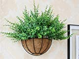 Tosnail PVC Coated Metal Wall Hanging Planter