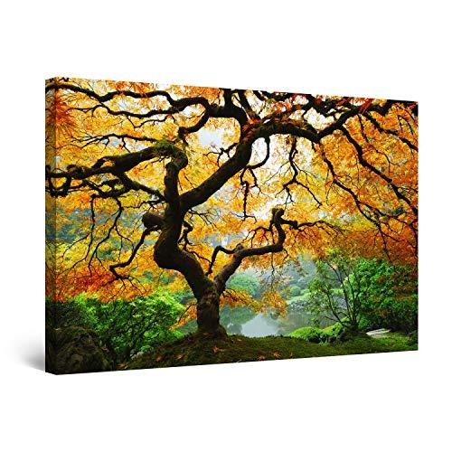 (Startonight Wall Art Canvas Maple Tree, Nature USA Framed 24 x 36 Inches )