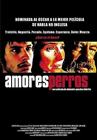 Amazon.com: Póster de película Amores Perros – 27 x 40: Home ...
