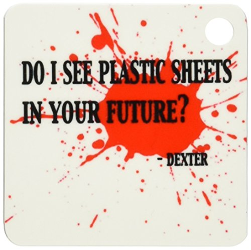 3dRose 8 x 8 x 0.25 Do I See Plastic Sheets in Your Future. Dexter Key Chains, set of 4 (Dexter Key)