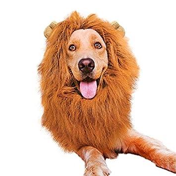 kingt Perros peluca Perros Disfraces bufandas León crines de caballo con orejas Disfraces para mascotas gato