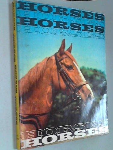 Horses, horses, horses, horses