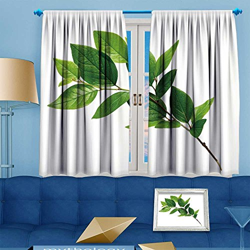 VROSELV Antique Decor Collection,twig with green leaves isolated on white,Living Room Bedroom Curtain 2 Panels Set, 72