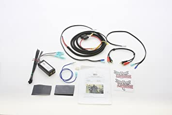 Libélula ciclo conceptos 23210 - 13 2 canales Amplificador arnés ...