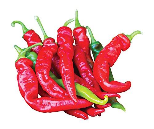 Hybrid Hot Pepper (Burpee Cheyenne Hybrid Hot Pepper Seeds 30 seeds)