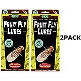 Springstar Fruit Fly Lures (2 Pack)