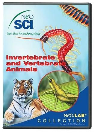Amazon.com: Neo/SCI Invertebrate and Vertebrate Animals Neo/LAB CD ...