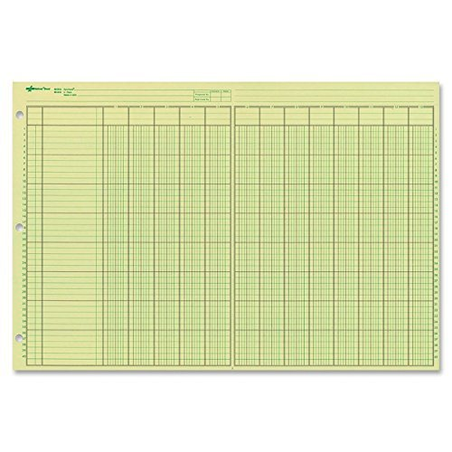 NATIONAL Brand Analysis Pad, 13 Columns, Green Paper, 11 x 16.375'', 50 Sheets (45613) 3-Pack