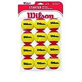 Wilson WRT137100 Starter Easy Ball-Dozen Pack