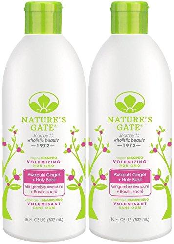 i Volumizing Shampoo for Fine, Limp Hair, 18-Ounce Bottles (Pack of 2) ()