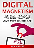 Digital Magnetism: Attract the Clients You Really Want And Grow Your Business Fast