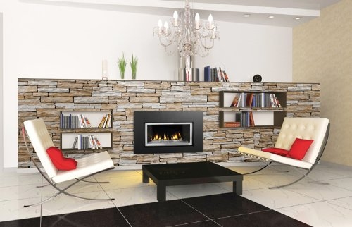 Napoleon GDI-30GN Direct Vent Natural Gas Fireplace Insert with Glass Door and R (Vent Gas Inserts Direct Fireplace)