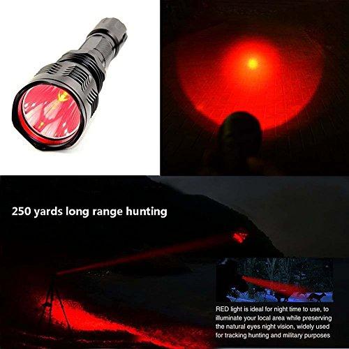 The 8 best predator hunting lights