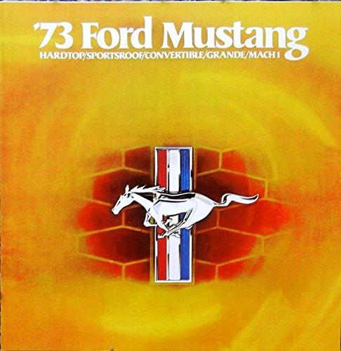 1973 mustang mach 1 - 2