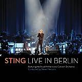 Sting - King Of Pain