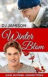 Bargain eBook - Winter Blom