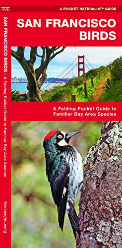 (San Francisco Birds: A Folding Pocket Guide to Familiar Bay Area Species (Wildlife and Nature)