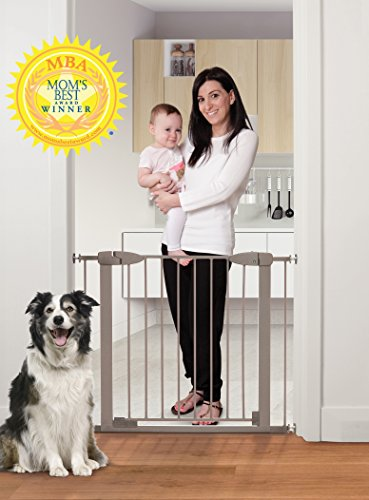Dreambaby Boston Magnetic Auto Close Security Gate w/Stay Open Feature (29.5-38 inches, (Auto Gate)