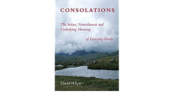 Consolations the solace nourishment and underlying meaning of consolations the solace nourishment and underlying meaning of everyday words ebook david whyte amazon kindle store fandeluxe Image collections