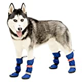 Walkin' All Weather Dog Boots - Set