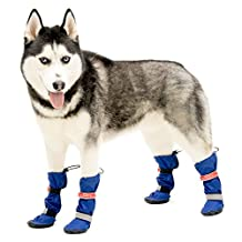 Walkin' All Weather Dog Boots - Set