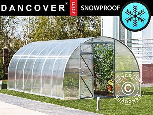 Dancover Invernadero de policarbonato, Strong 18m², 3x6m, Plateado: Amazon.es: Jardín